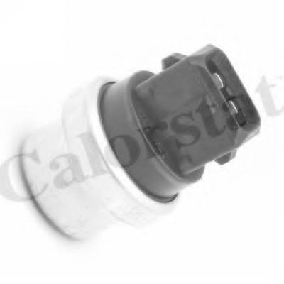 CALORSTAT BY VERNET TS2901 Термовыключатель, вентилятор радиатора