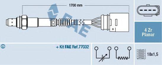 FAE 77902